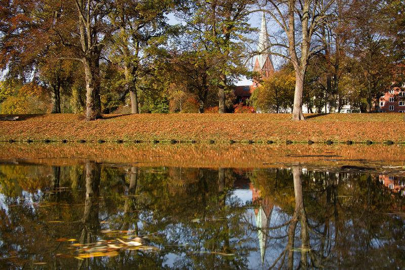Herbststimmung: Herbstlaub liegt auf der Erde und die Bäume tragen buntes Laub. Im Vordergrund ist ein Wasser zu sehen. Im Hintergrund sieht man den Turm von St. Aegidien.