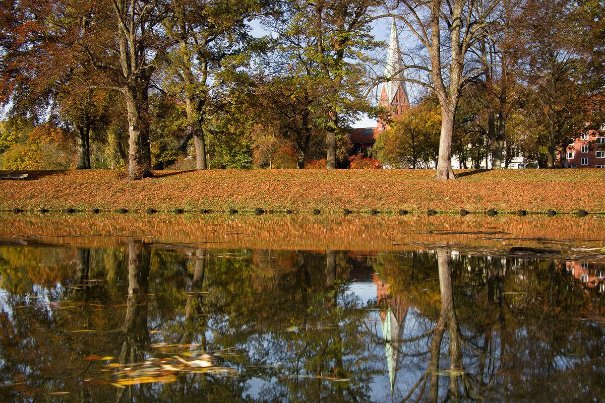 Herbststimmung: Herbstlaub liegt auf der Erde und die Bäume tragen buntes Laub. Im Vordergrund ist ein Wasser zu sehen. Im Hintergrund sieht man den Turm von St. Aegidien. - Copyright: Dr. Karen Meyer-Rebentisch