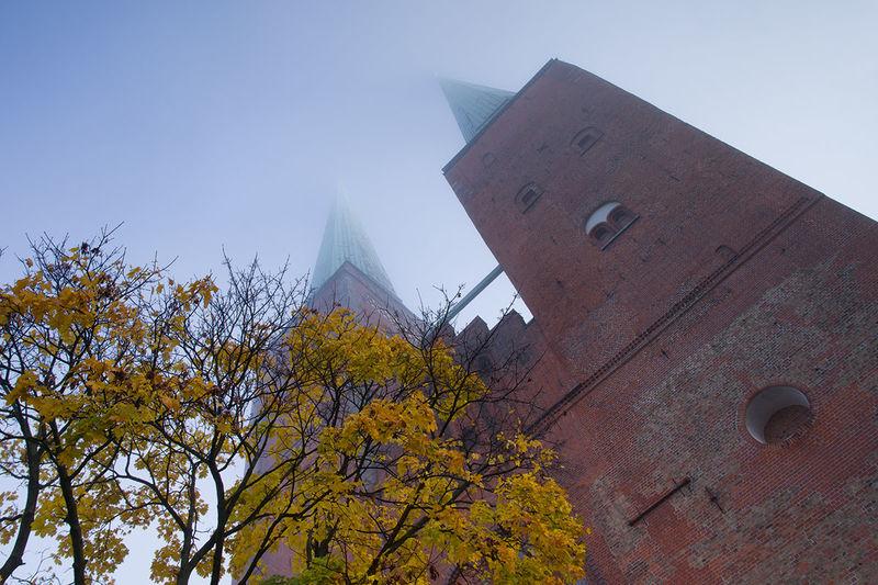 Herbststimmung: Im Vordergrund sieht man einen Baum, welcher schon viele seiner Blätter verloren hat. Es hängen noch einige gelbe Blätter an den Zweigen. Im Hintergrund sind von unten fotografiert, majestätisch die Türme vom Dom zu sehen. Die Turmspitzen sind leicht im Nebel getaucht.