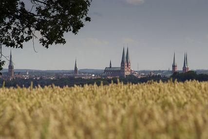 Im Vordergrund ist ein blühendes Rapsfeld zu sehen, im Hintergrund ist die Skyline mit den sieben Türmen von Lübeck zu sehen. - Copyright: Karen Meyer-Rebentisch