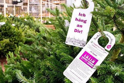 An einer Nordmanntanne hängen Türschilder mit dem Spruch 'Ich häng an dir!', Werbetexten und dem Sieben-Türme-Logo - Copyright: Ev.-Luth. Kirchenkreis Lübeck-Lauenburg